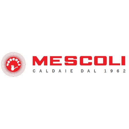 Rivenditori caldaie robur atag mescoli klover firenze for Mescoli caldaie